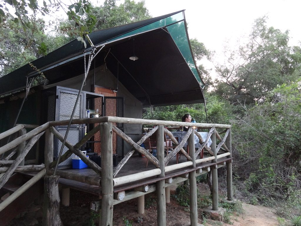 Tented Camp in Tamboti